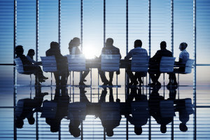Non-Executive Directors: A Special Role